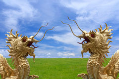 Goldener Drache mit Feldern und nettem Himmelhintergrund stockbild