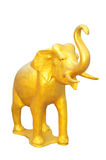 Goldener Elefant stockbild
