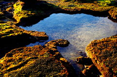 Goldener Felsen Stockfotografie