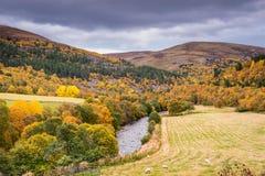 Goldener Glen Gairn im Herbst Lizenzfreie Stockbilder