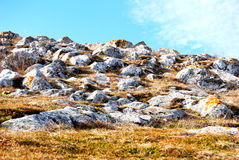 Goldener Hügel stockfoto