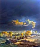Goldener Herbst Stockbild