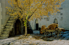 Goldener Herbst (die Türkei) Stockfoto