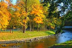 Goldener Herbst durch den Fluss Lizenzfreie Stockfotografie