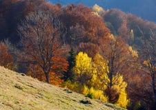 Goldener Herbst im Berg Lizenzfreie Stockfotografie