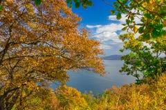 Goldener Herbst im Primorsky-Gebiet Lizenzfreie Stockbilder