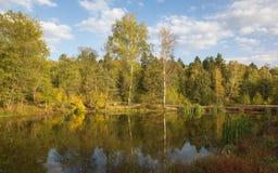 Goldener Herbst in Mittel-Russland stockbilder