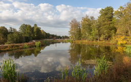 Goldener Herbst in Mittel-Russland lizenzfreies stockbild