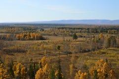Goldener Herbst in Ost-Sibirien Landwirtschaftliche Landschaft Stockbilder