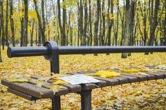 Goldener Herbst Schöne Ahornblätter auf einer Bank Lizenzfreie Stockbilder