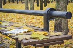 Goldener Herbst Schöne Ahornblätter auf einer Bank Lizenzfreie Stockfotografie