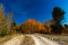 Goldener Herbst in Ukraine Lizenzfreies Stockbild
