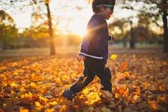 Goldener Herbst und laufender Junge Lizenzfreies Stockfoto