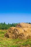 Goldener Heuballen Bauernhof Stockfotografie