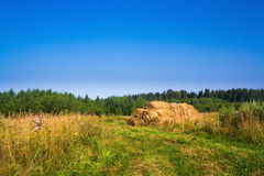 Goldener Heuballen Bauernhof Stockfoto
