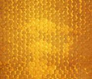 Goldener Hintergrund von Bienenbienenwaben füllte mit süßem klebrigem ho lizenzfreies stockfoto