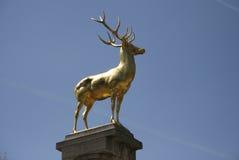 Goldener Hirsch (golden deer). CIRCA MARCH 2013 - BERLIN: the Goldener Hirsch (golden deer) sculpture/ monument, Hirschbrunnen, Rudolph Wilde Park, Berlin Stock Photos