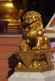 Goldener Löwe (chinesische Art) Lizenzfreie Stockfotos
