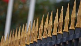 Goldener Lanzenzaun Lizenzfreies Stockbild