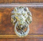 Goldener Löwekopfklopfer auf einer alten Holztür Stockbilder