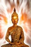 Goldener meditierender Buddha Stockfoto