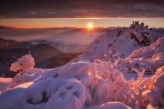 Goldener Morgen Lizenzfreies Stockfoto