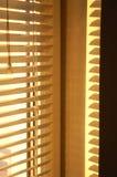 Goldener Morgen II Lizenzfreie Stockfotos