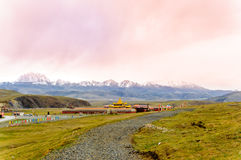 Goldener Muya Pagode durch Tagong-Wiese in Sichuan Stockfotos