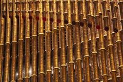 Goldener Rohr-Bambus formte stockbilder