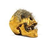 Goldener Schädel Stockfoto