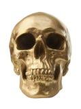 Goldener Schädel auf weißem Hintergrund Stockbilder