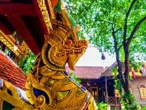 Goldener Schlangenkönig stockfoto