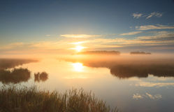 Goldener Sonnenaufgang lizenzfreies stockfoto