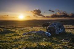 Goldener Sonnenuntergang Caradon-Hügel, Cornwall, Großbritannien Stockbild