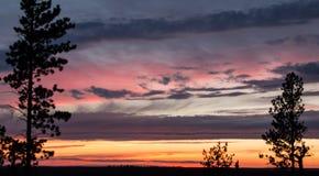 Goldener Sonnenuntergang mit den blauen und rosa Streifen von Wolken lizenzfreies stockbild