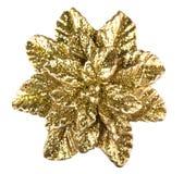 Goldener Stern Lizenzfreie Stockfotos