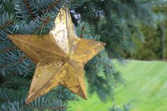 Goldener Stern in einem Weihnachtsbaum Stockfotos