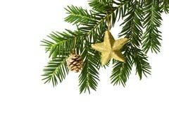 Goldener Stern- und Kieferkegel auf Weihnachtsbaum breiten sich aus Stockfoto