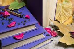 Goldener Stift und alte Bücher Stockbilder