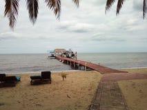 Goldener Strand Stockbilder
