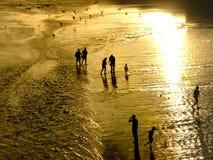 Goldener Strand stockfotografie