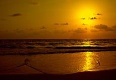 Goldener Strand - Goa - Indien Stockbild