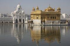 Goldener Tempel in Amritsar stockbild