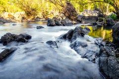 Goldener Wald des Wasserfalls im Nationalpark Lizenzfreies Stockbild