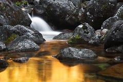 Goldener Wasserfall Stockbilder