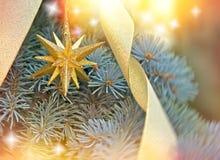 Goldener Weihnachtsstern auf Weihnachtsbaum Stockfoto