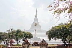 Goldener Zapfen Gebirgspagode Chedi Phukhao lizenzfreies stockbild