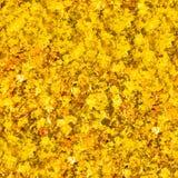 Goldenes abstraktes nahtloses Stockbilder
