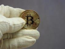 Goldenes Bitcoin behandelt mit Handschuhen stockbilder