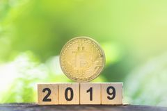 Goldenes bitcoin und Holzklotzzahljahr 2019 auf Grünnaturhintergrund mit Kopienraum lizenzfreies stockfoto
